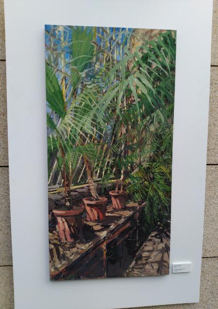 'Tropics' by Gerard Byrne